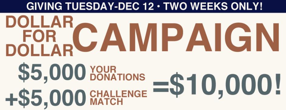 Dollar for Dollar Campaign